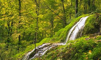 Bild aus der Region Schwäbische Alb